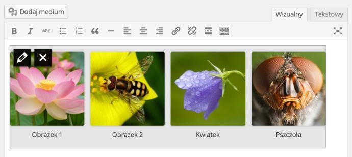WordPress 3.9 - galerie