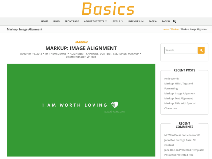 BCorp Basics